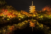 kyoto fire