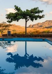 pool still life