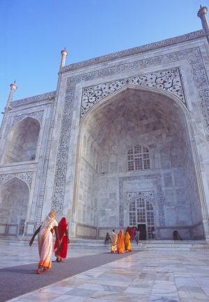 a taj of colour