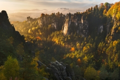 forest whispers - saxon switzerland germany